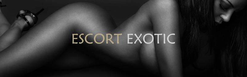 Escort Exotic